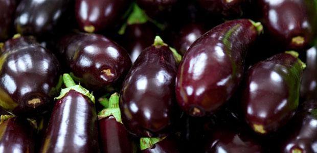 eggplants00